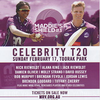 Celebrity cricket match 2019